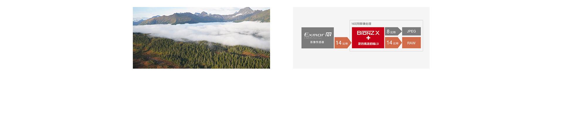 ISO 100-32000范围&14比特RAW输出示意图